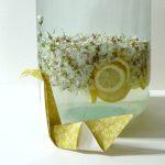 Limonade d'acacia maison